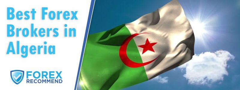 Best Forex Brokers for Algeria